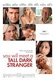 You Will Meet a Tall Dark Stranger poster